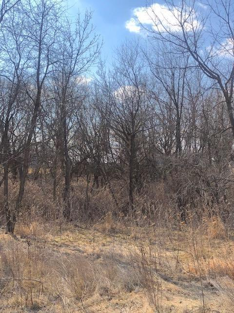 1801 Hobart, Grinnell, Iowa 50112-1251, ,Lots & Land,For Sale,Hobart,5506039