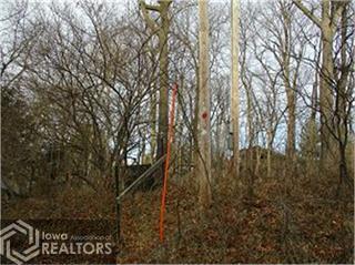 2041 Larry, Brooklyn, Iowa 52211-2754, ,Lots & Land,For Sale,Larry,6104148