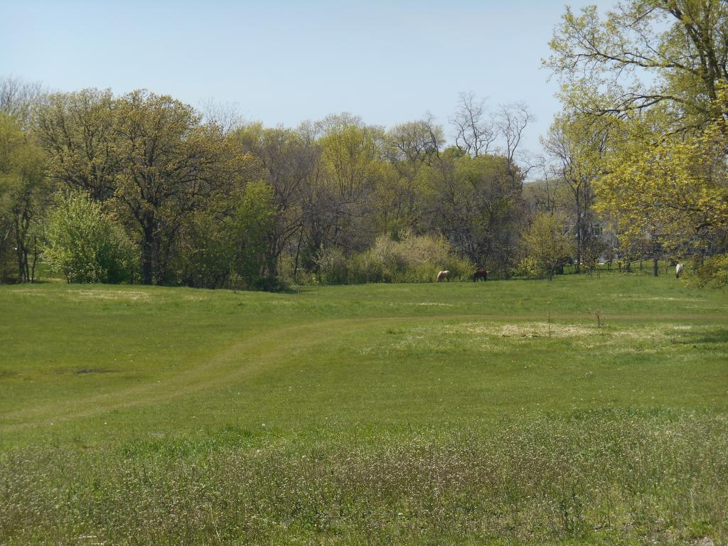 2605 South Shore Drive, Clear Lake, Iowa 50428, ,Lots & Land,For Sale,South Shore Drive,5567367