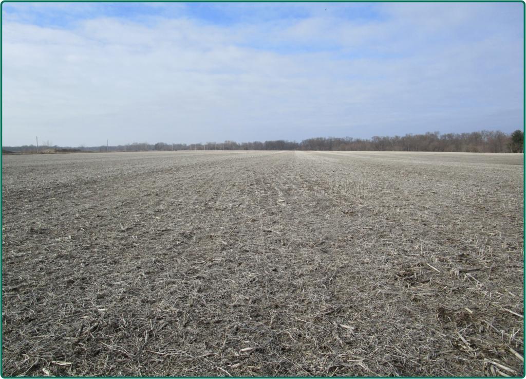 0 Hwy F28, West Branch, Iowa 52255, ,Farm,For Sale,Hwy F28,5547549