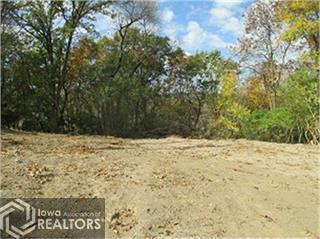 1198 Ridge, Brooklyn, Iowa 52211-9412, ,Lots & Land,For Sale,Ridge,5762825